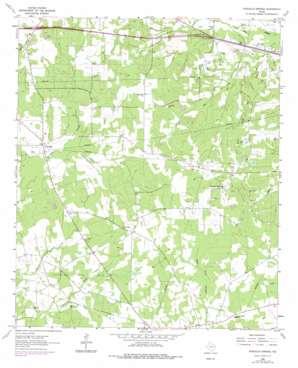 Stricklin Springs topo map