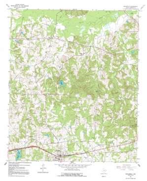 Hallsville topo map
