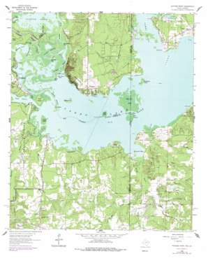 Potters Point topo map