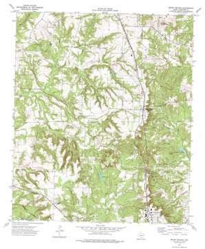 Mount Selman topo map
