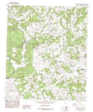 Coon Creek Lake topo map
