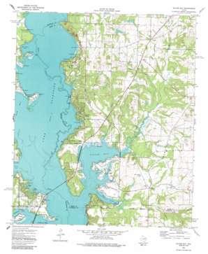 Saline Bay topo map