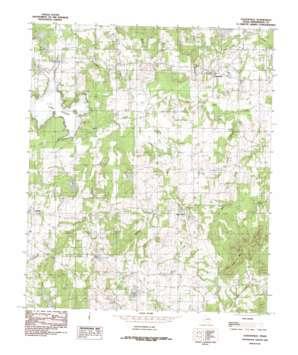 Leagueville topo map