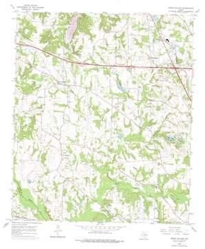 Mount Sylvan topo map