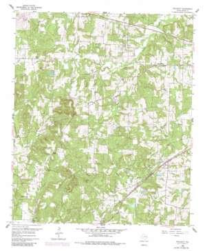Pritchett topo map