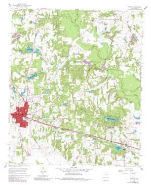 Mineola topo map