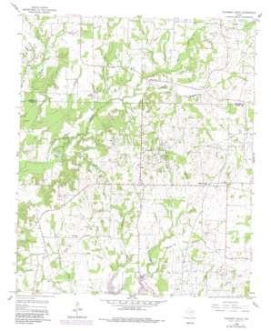 Pleasant Grove topo map