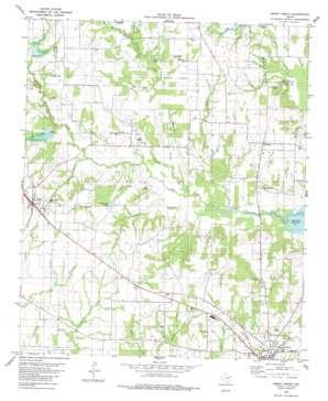 Emory North topo map