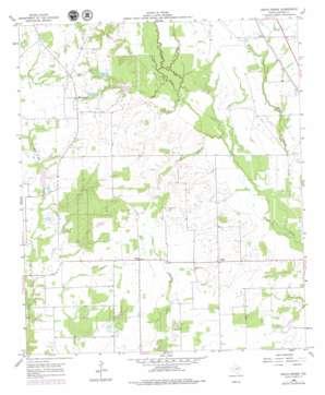 Grays Prairie topo map