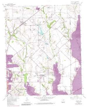 Rowlett topo map