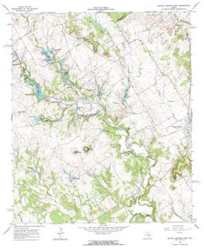Walnut Springs West topo map