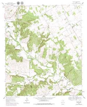 Paluxy USGS topographic map 32097c8