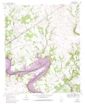 Acton topo map