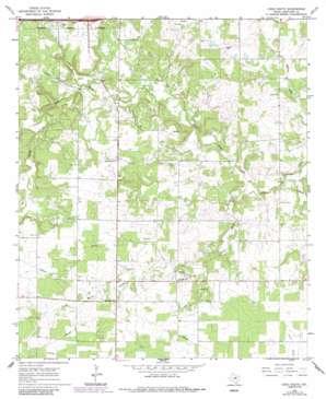 Cisco South topo map