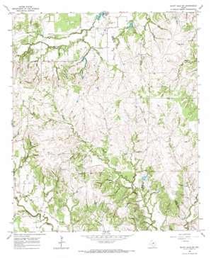 Bluff Dale Ne topo map