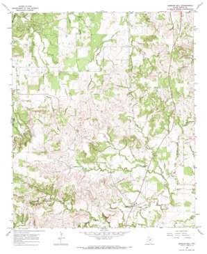 Morgan Mill topo map