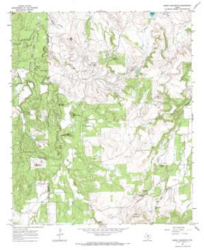 Reddy Mountain USGS topographic map 32098d4