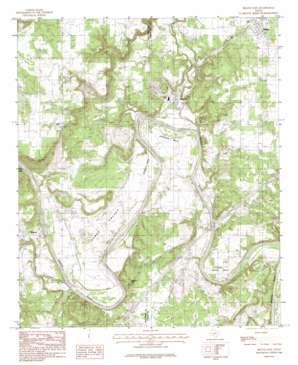 Brazos East topo map