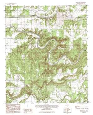 Brazos West topo map