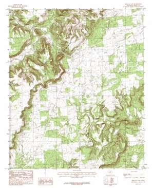 Metcalf Gap topo map