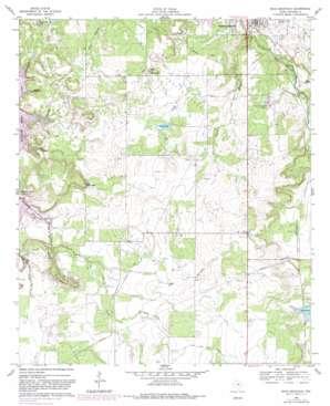 Buck Mountain USGS topographic map 32098f8