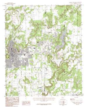 Mineral Wells East topo map