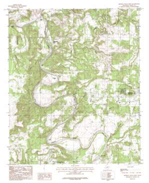 Mineral Wells West topo map