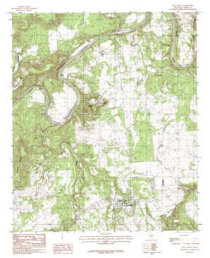 Palo Pinto topo map