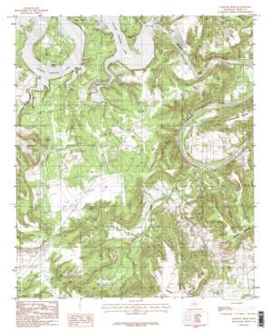 Fortune Bend USGS topographic map 32098g4