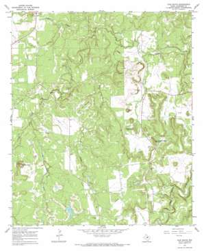 Ivan South USGS topographic map 32098g6