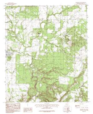 Graford East USGS topographic map 32098h2