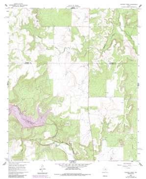 Crooked Creek topo map