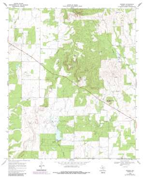Rowden USGS topographic map 32099b3