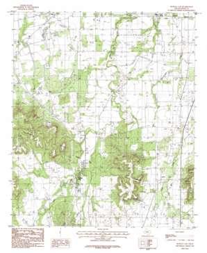 Buffalo Gap topo map