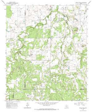 Indian Knoll topo map