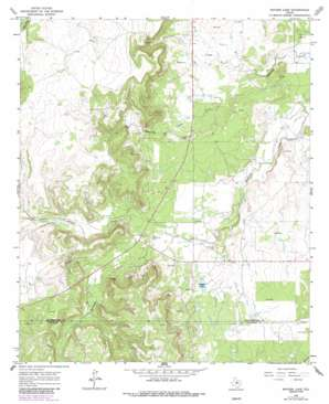 Snyder Lake topo map