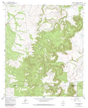 Leeper Creek USGS topographic map 32099e4