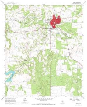 Albany topo map