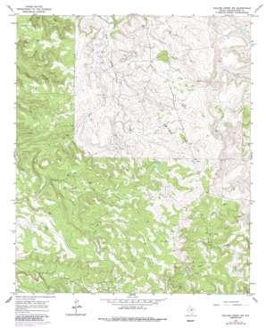 Collins Creek Sw topo map