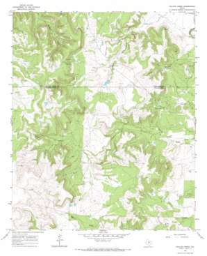 Collins Creek USGS topographic map 32099h3