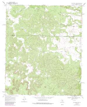 Blackwell Sw topo map