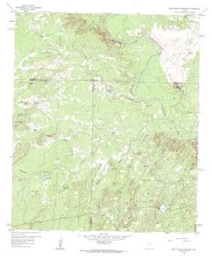 Dead Indian Mountain topo map