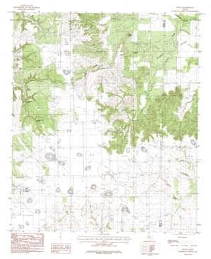 Nolan USGS topographic map 32100c2