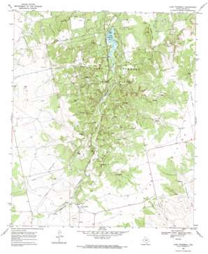 Lake Trammell topo map