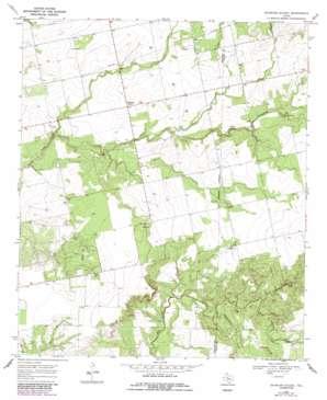 Baumann School topo map