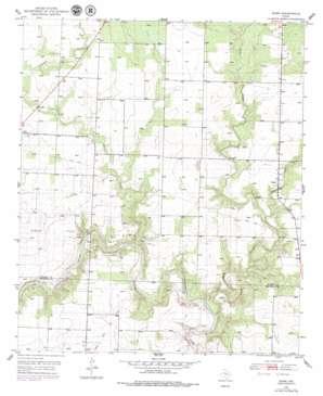 Dunn USGS topographic map 32100e8