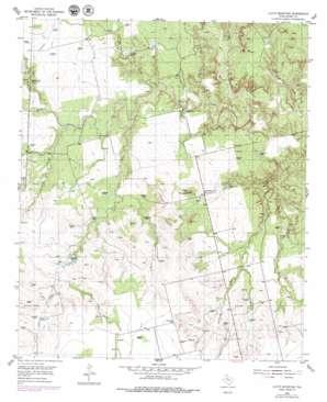 Lloyd Mountain USGS topographic map 32100g7