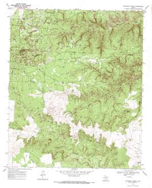 Maverick Creek USGS topographic map 32100h7