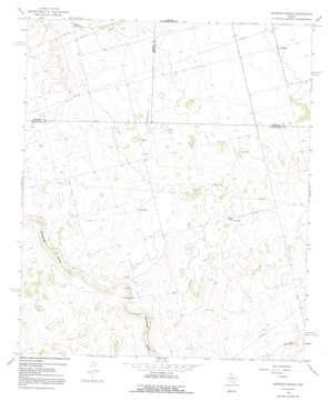 Houston Ranch topo map