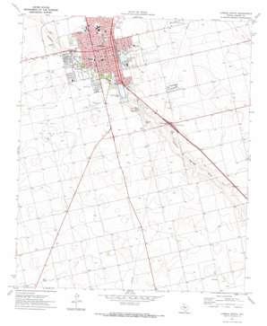 Lamesa South topo map